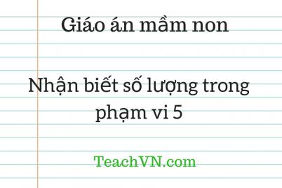 giao-an-mam-non-lam-quen-toan-nhan-biet-so-luong-trong-pham-vi-5.png