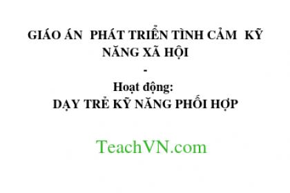giao-an-phat-trien-tinh-cam-ky-nang-xa-hoi-hoat-dong-day-tre-ky-nang-phoi-hop.png