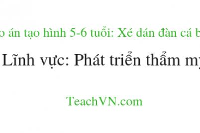 giao-an-tao-hinh-5-6-tuoi-xe-dan-dan-ca-boi-linh-vuc-phat-trien-tham-my.png