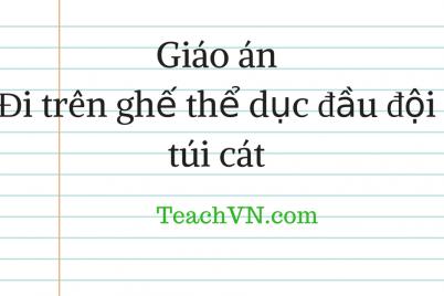 giao-di-tren-ghe-duc-dau-doi-tui-cat.png