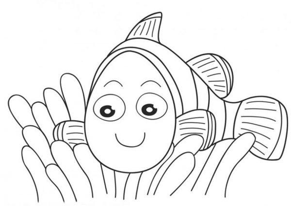Download 20 bức tranh cho bé tập tô màu con vật giúp tăng khả năng tư duy 43