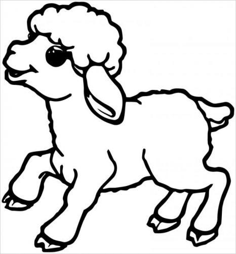Tải tranh tô màu cho bé 3 tuổi chủ đề động vật phát triển tư duy sáng tạo 40