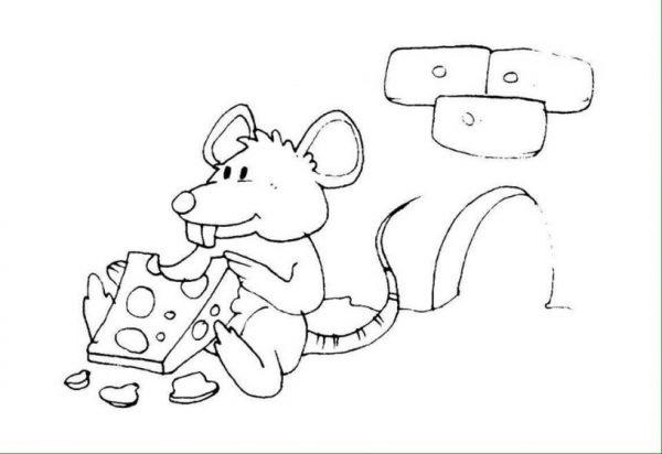 Download tranh tô màu con vật cho bé 2-5 tuổi 52
