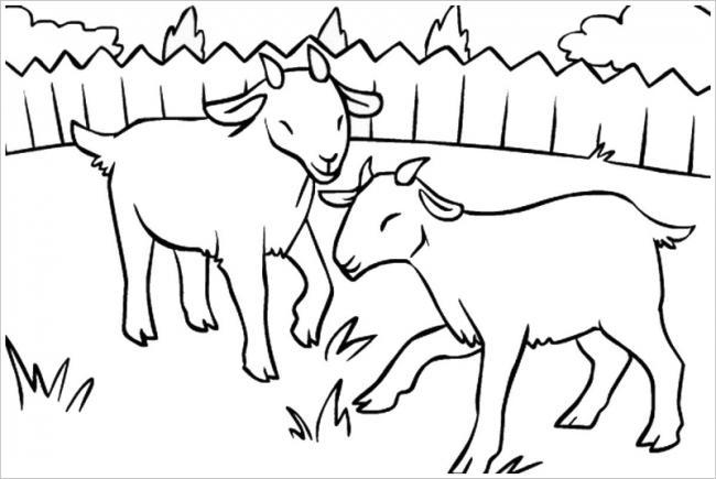 Download tranh tô màu chủ đề động vật con dê cho bé 4 tuổi yêu hội họa 1