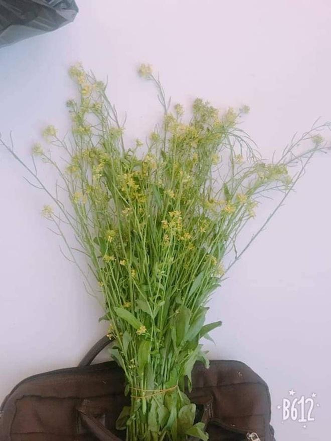 Món quà giản dị đầy ý nghĩa của học sinh vùng cao hoa dại, rau cải, chuối tặng ngày 20/11 khiến cô mừng phát khóc 4