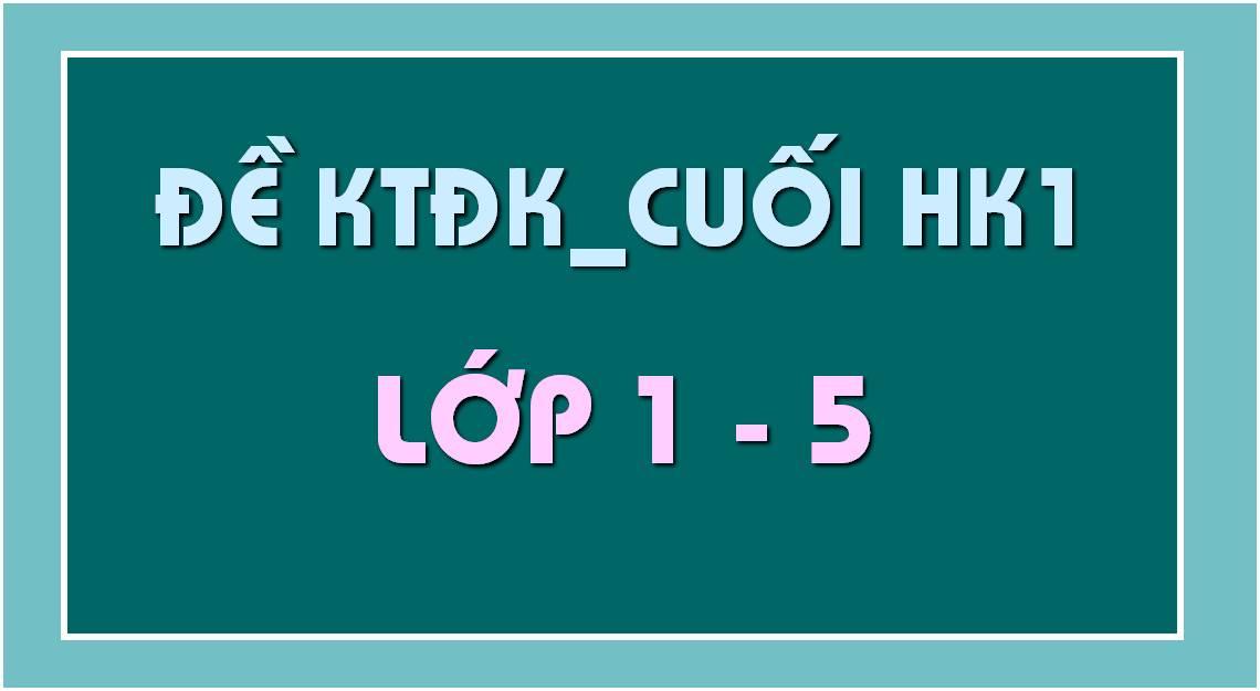 -kiển-tra-định-kỳ-cuối-HK1-lớp-1-2-3-4-5.jpg