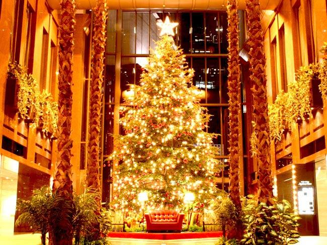 Giải mã sự thật về Giáng Sinh, ông già Noel và tuần lộc 11