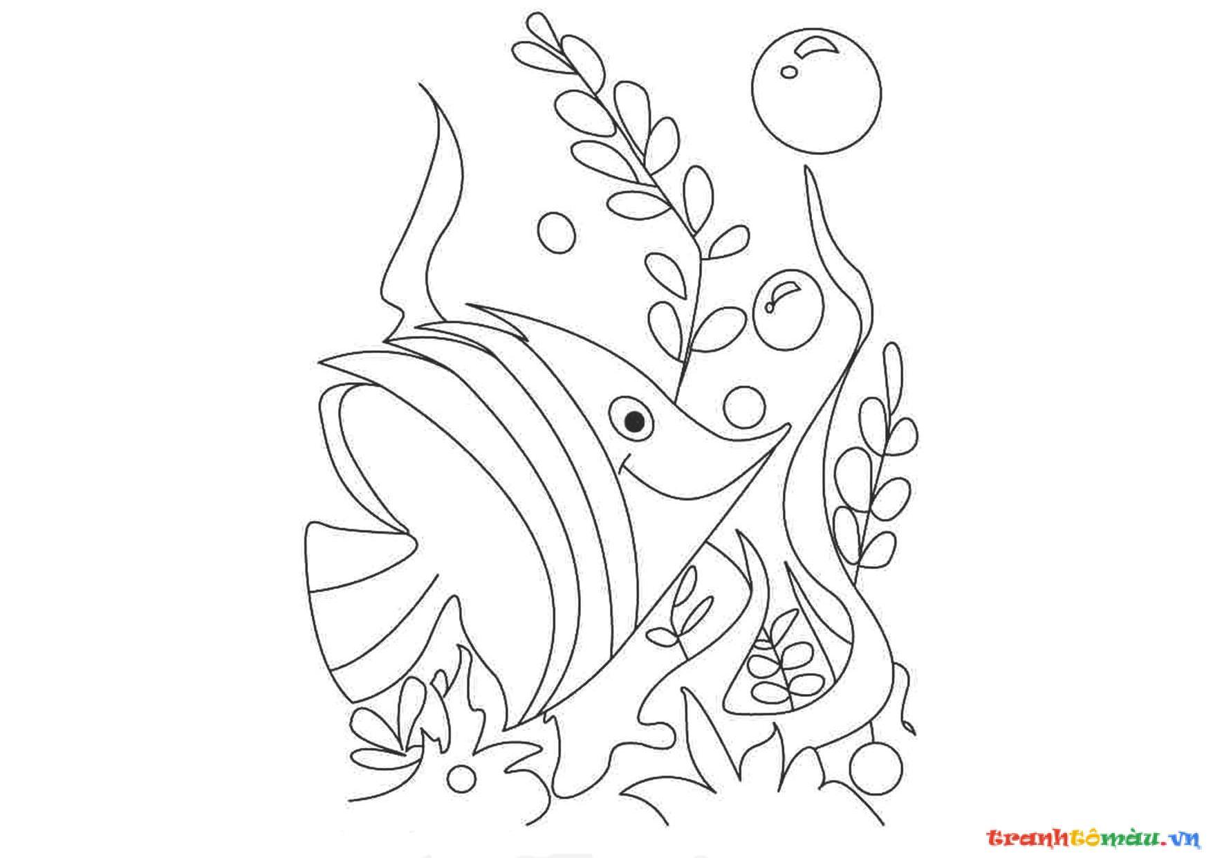 Tranh tô màu rong và cá đẹp kích thích sáng tạo 3