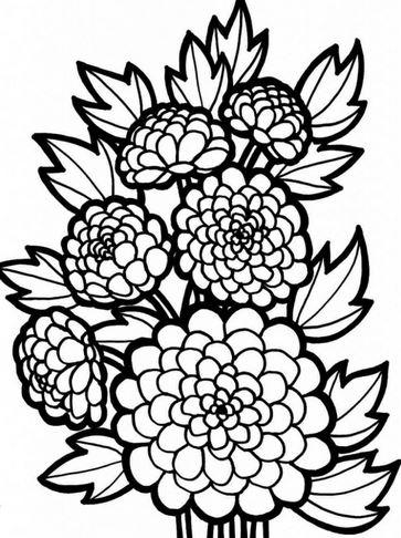 Bộ tranh tô màu hình các loài hoa đầy màu sắc 16