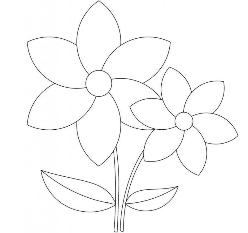 Bộ tranh tô màu hình các loài hoa đầy màu sắc 22