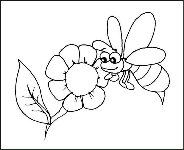 Bộ tranh tô màu hình các loài hoa đầy màu sắc 25