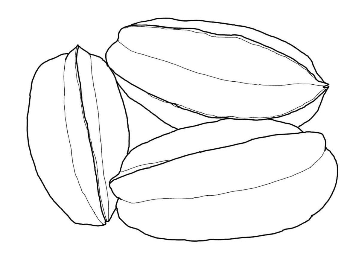 Donwload tranh tô màu quả khế 8