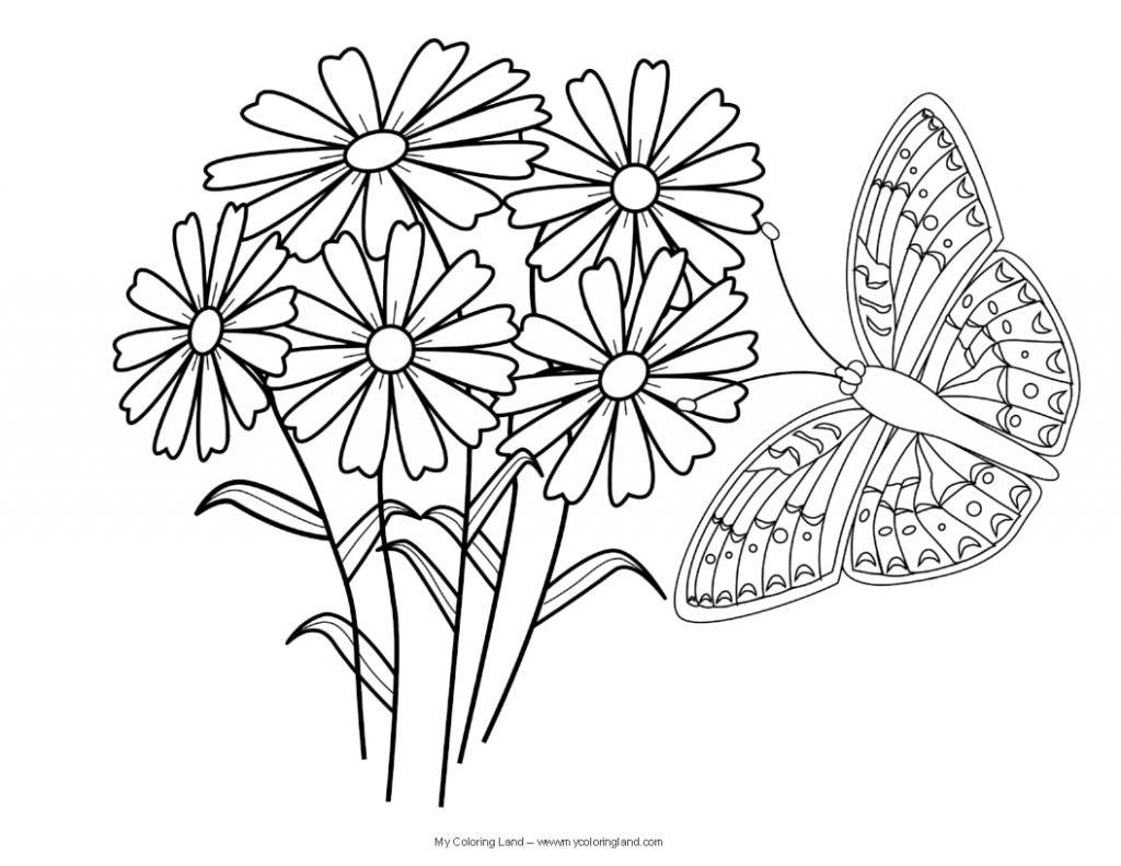 Tranh tô màu con bướm đẹp cho bé gái 49