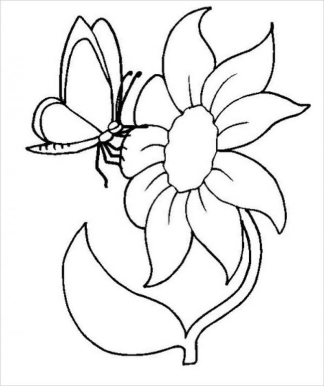 Tranh tô màu con bướm đẹp cho bé gái 66