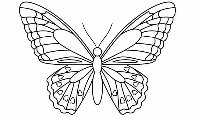 Tranh tô màu con bướm đẹp cho bé gái 67
