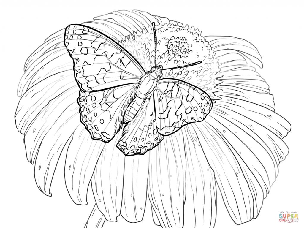 Tranh tô màu con bướm đẹp cho bé gái 50