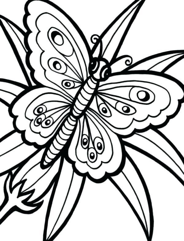 Tranh tô màu con bướm đẹp cho bé gái 51