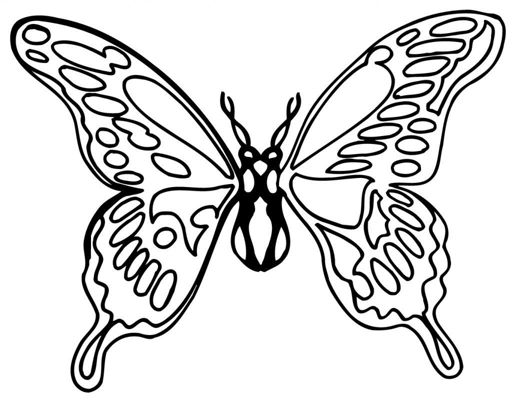 Tranh tô màu con bướm đẹp cho bé gái 56