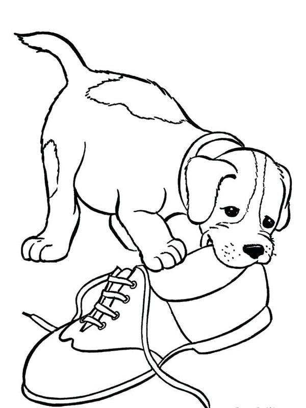 Bố sự tập 1000+ tranh tô màu con chó phát triển sáng tạo 42