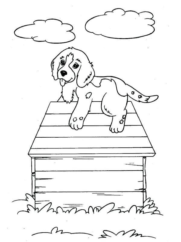 Bố sự tập 1000+ tranh tô màu con chó phát triển sáng tạo 46