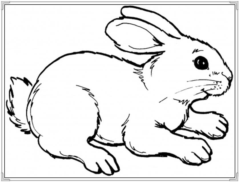 Bộ sưu tập tranh tô màu con thỏ ngộ nghĩnh đáng yêu 39