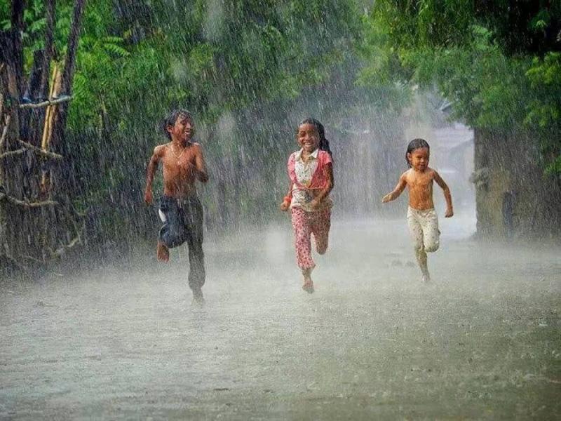 5 Mẫu lập dàn ý tả cơn mưa hay được tham khảo nhiều nhất