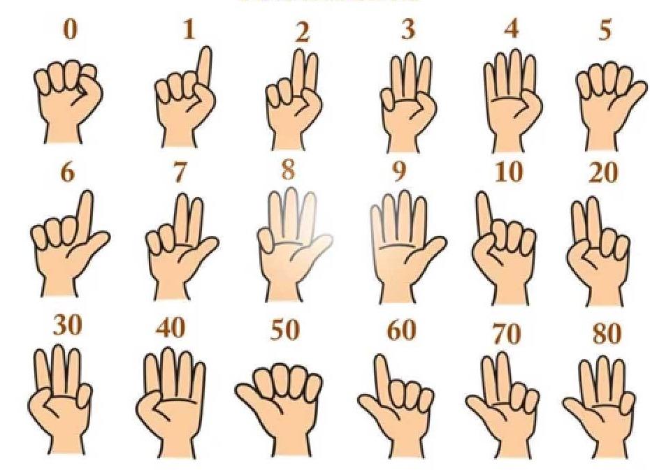 Dạy trẻ tính nhẩm nhanh bằng cách đếm ngón tay, giúp bé học toán dễ dàng 8