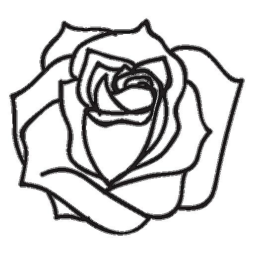 Download tranh tô màu hoa hồng cho bé được tải nhiều nhất 13