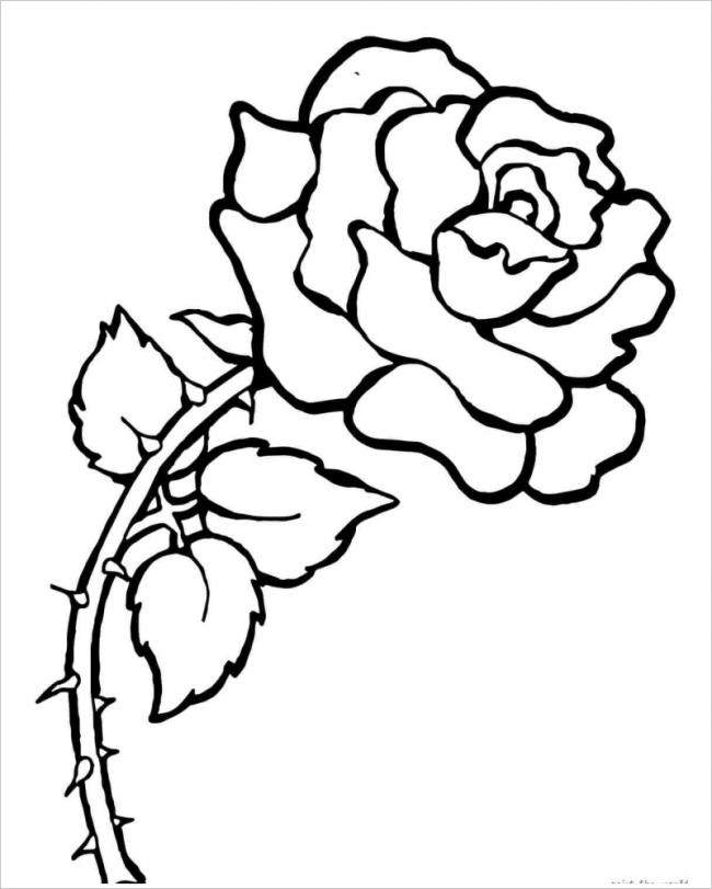 Download tranh tô màu hoa hồng cho bé được tải nhiều nhất 16
