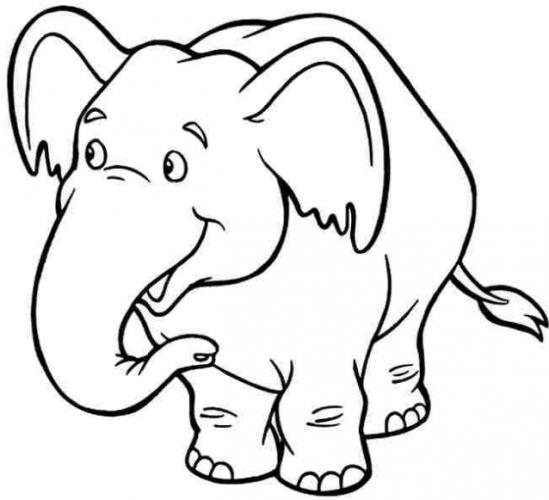 Bộ tranh tô màu con voi siêu ngộ nghĩnh 33