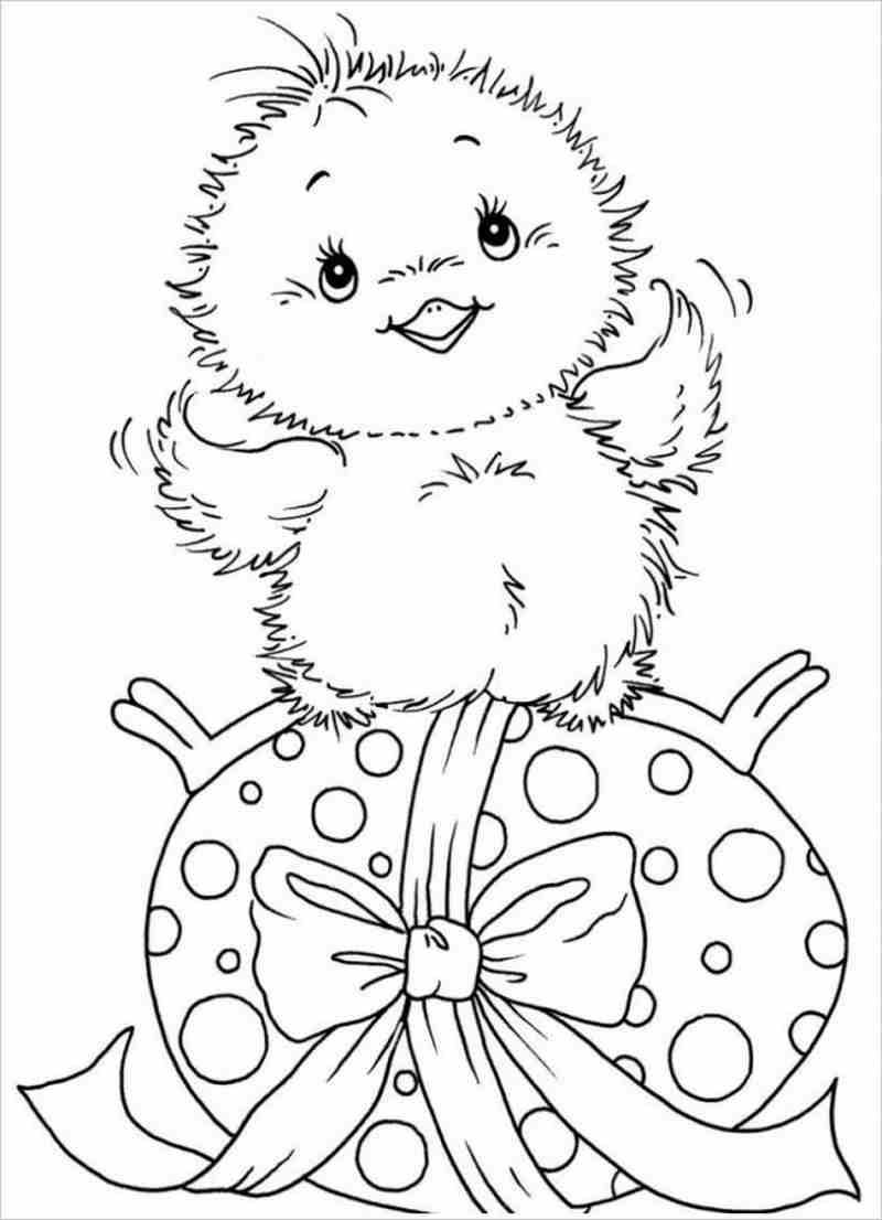 Bộ tranh tô màu con gà đẹp dành cho bé được tải nhiều nhất 5
