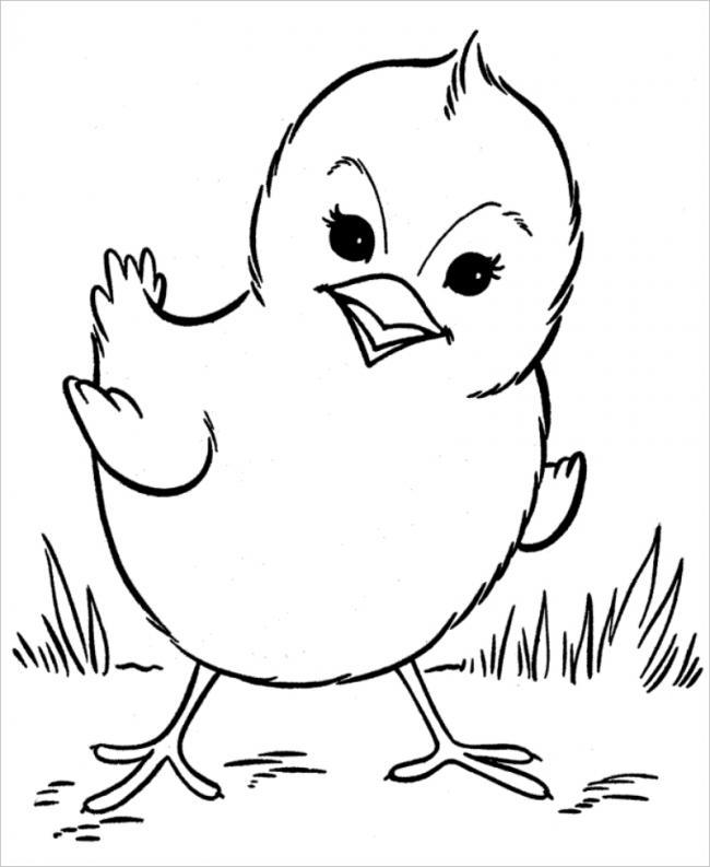 Bộ tranh tô màu con gà đẹp dành cho bé được tải nhiều nhất 12