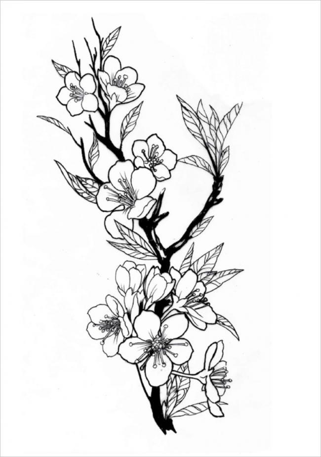 Tranh tô màu hoa đào hoa mai ngày Tết đẹp cho bé 19