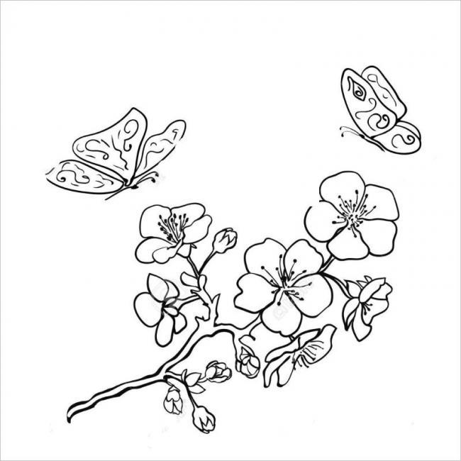 Tranh tô màu hoa đào hoa mai ngày Tết đẹp cho bé 21