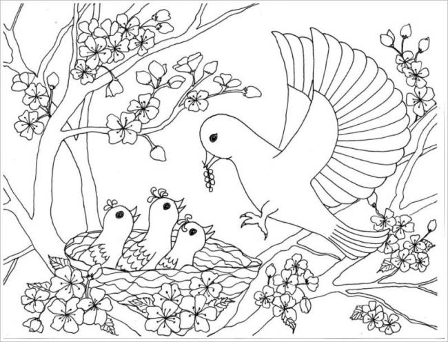 Tranh tô màu hoa đào hoa mai ngày Tết đẹp cho bé 23