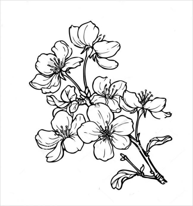 Tranh tô màu hoa đào hoa mai ngày Tết đẹp cho bé 31
