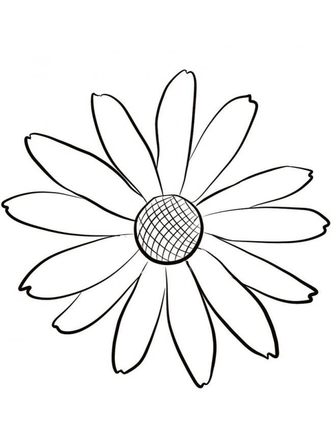 dai-ta-luong-ngoc-anh-tien-polymer