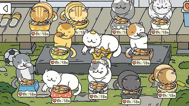 Cách tải và hướng dẫn cách chơi game Adorable Home nuôi mèo 31