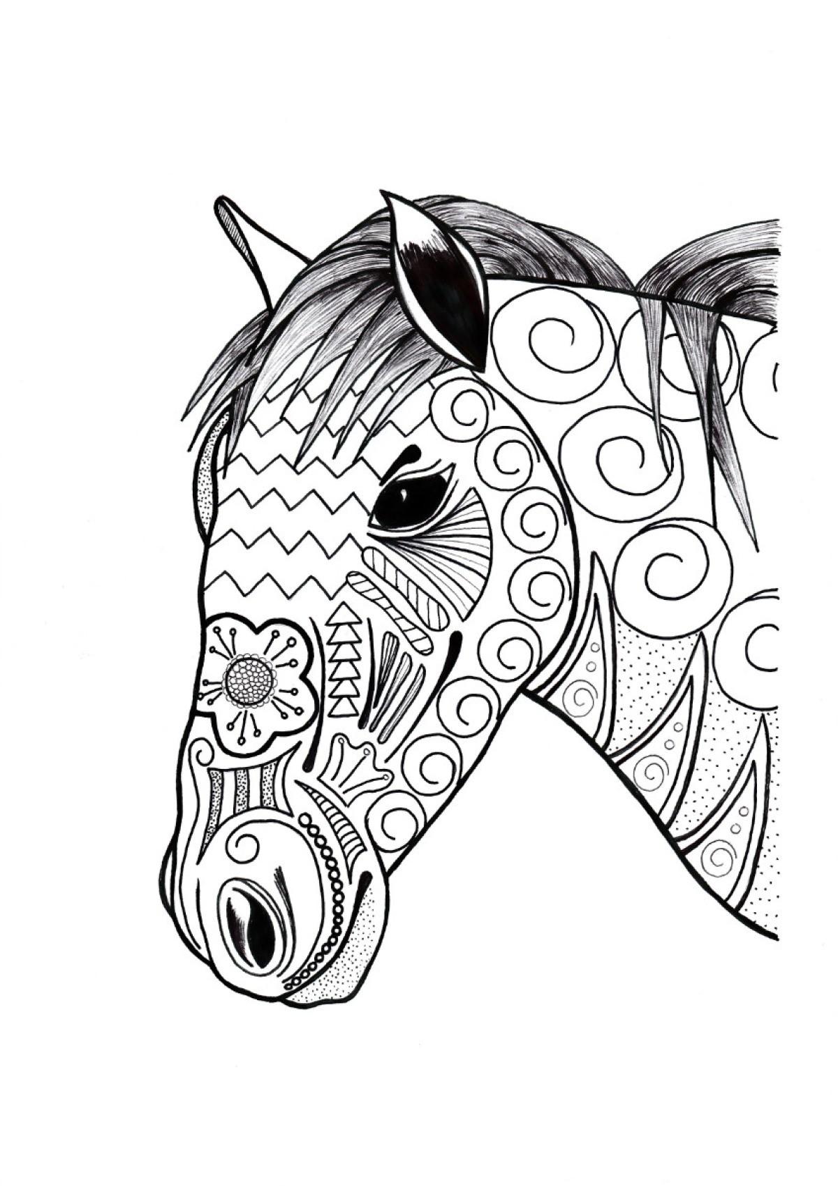 Bộ sưu tập tranh tô màu con ngựa dành tặng bé 50