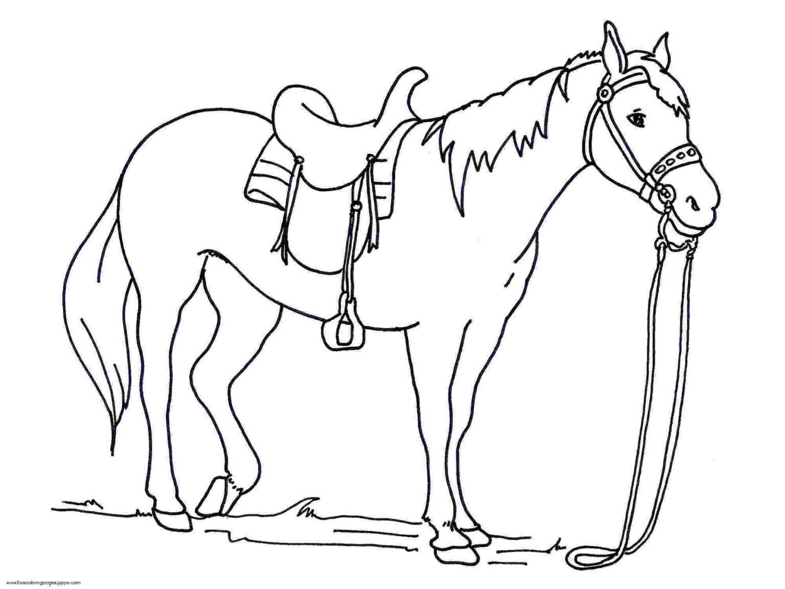 Bộ sưu tập tranh tô màu con ngựa dành tặng bé 51
