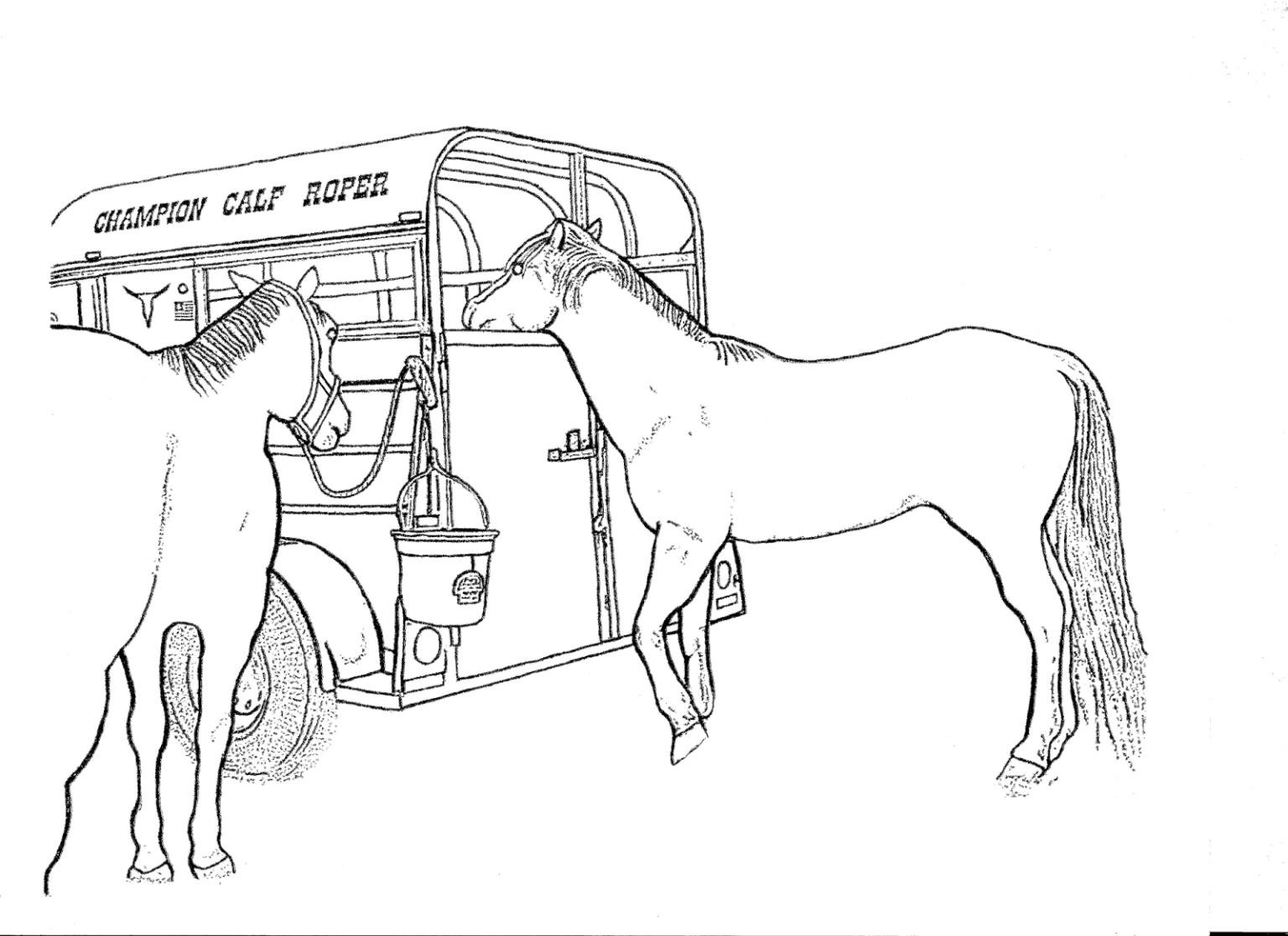 Bộ sưu tập tranh tô màu con ngựa dành tặng bé 40
