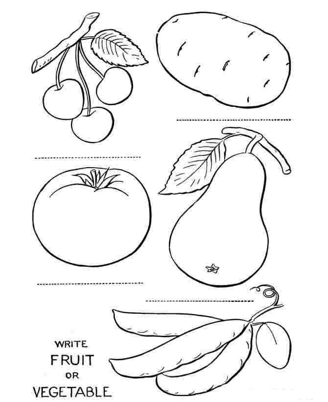 Tranh tô màu rau củ quả giúp bé nhận biết dễ dàng! 40