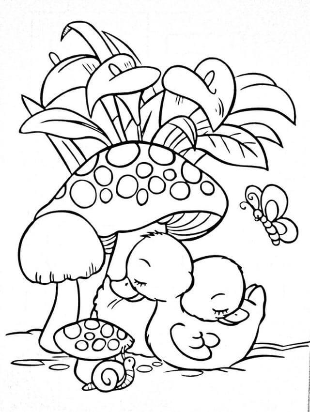 Tổng hợp tranh tô màu cây cối cho bé yêu thiên nhiên 42
