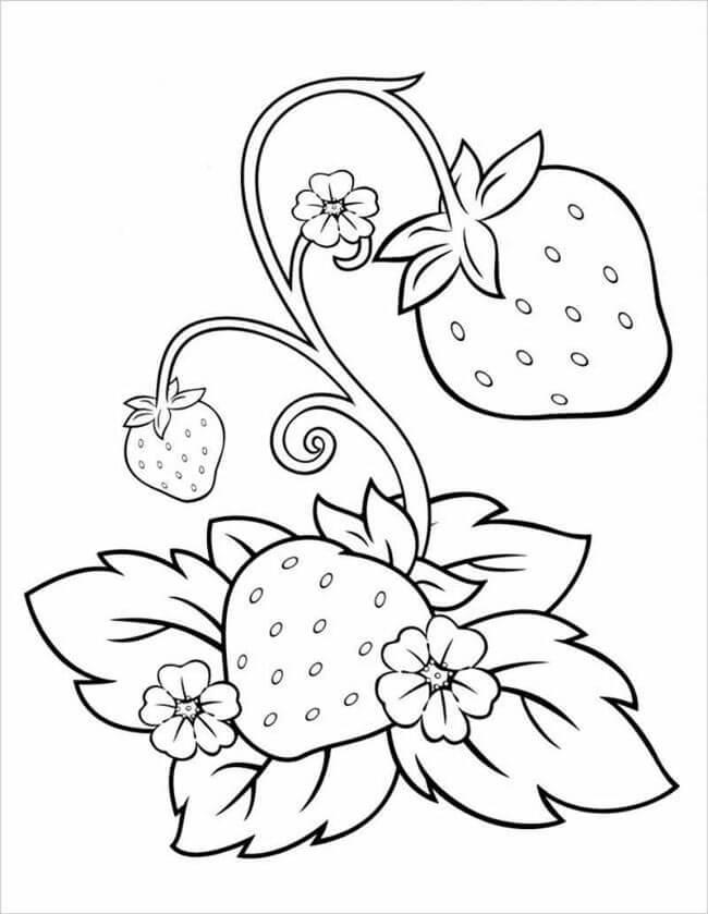 Tổng hợp tranh tô màu cây cối cho bé yêu thiên nhiên 43