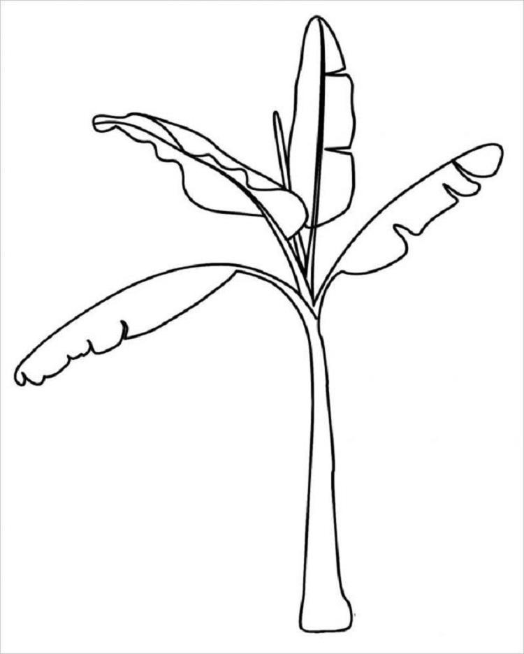Tổng hợp tranh tô màu cây cối cho bé yêu thiên nhiên 48