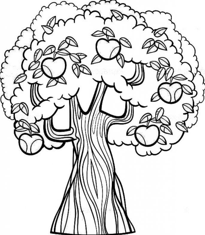 Tổng hợp tranh tô màu cây cối cho bé yêu thiên nhiên 33