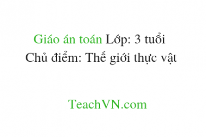 giao-an-toan-lop-3-tuoi-chu-diem-the-gioi-thuc-vat-1.png