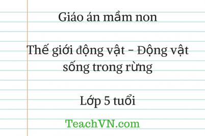 giao-mam-non-5-tuoi-gioi-dong-vat-dong-vat-song-trong-rung.png
