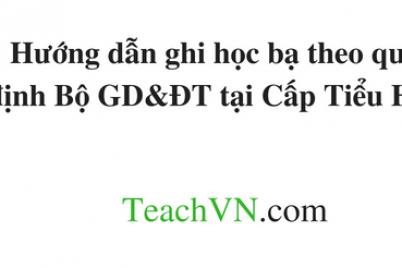 huong-dan-ghi-hoc-ba-theo-quy-dinh-bo-gddt-tai-cap-tieu-hoc.png