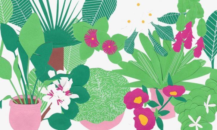 pngtree-plant-clip-art-png-clipart_1074019.jpg